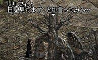 Lin0716_5.jpg