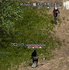 LinC1004_1.jpg