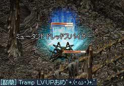 LinC1115_3.jpg