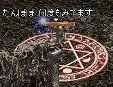 LinC921_7.jpg